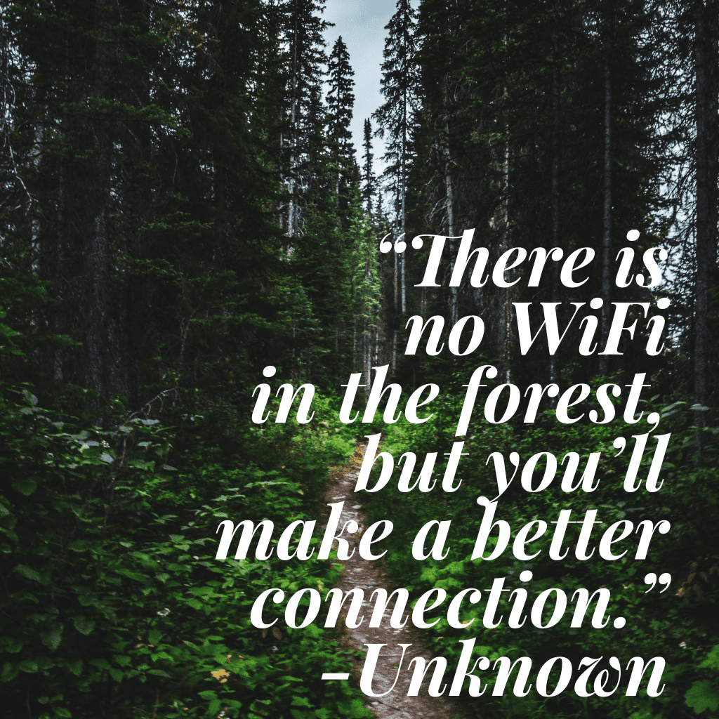 Hiking quote: There is no WiFi in the forest but you'll make a better connection